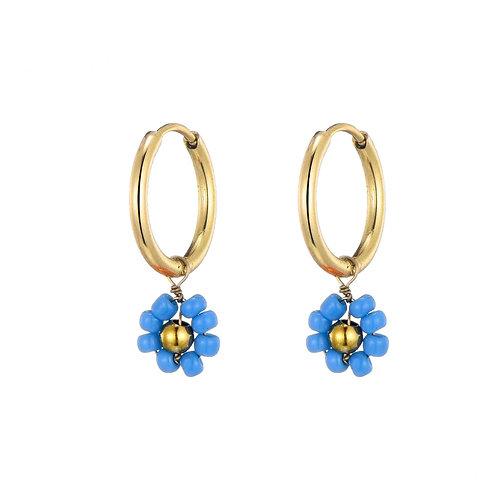 Hoops Daisy Blue Gold