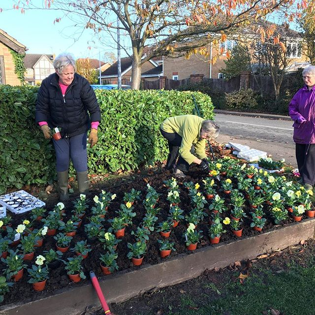 Some of our WI ladies get busy planting out the village flower beds - making it happen!!!