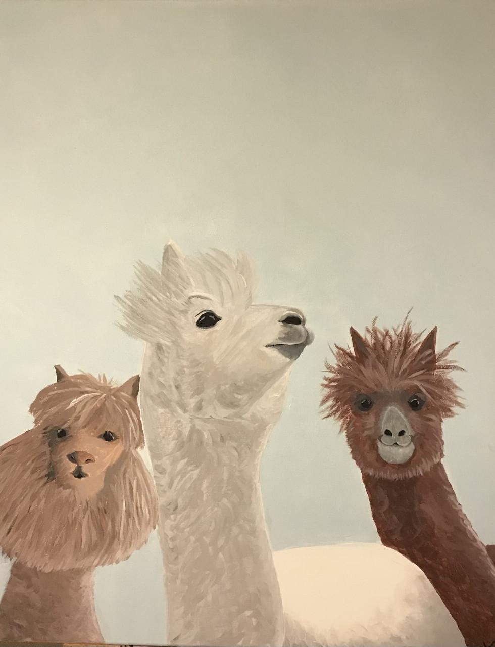 """""""The Llama Herd"""""""