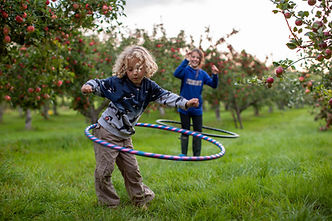 Children enjoying playing hula hoop in the grass next to red apple trees