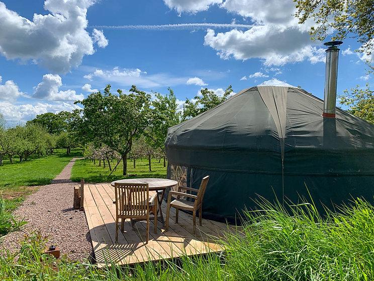 Cai Yurt at Dragon Orchard.jpg