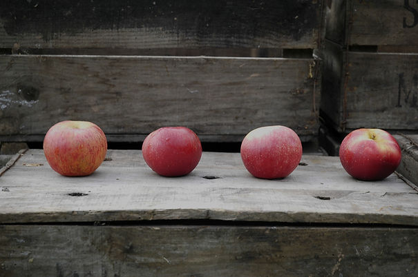 Four red apples sat in a row on a wooden apple box