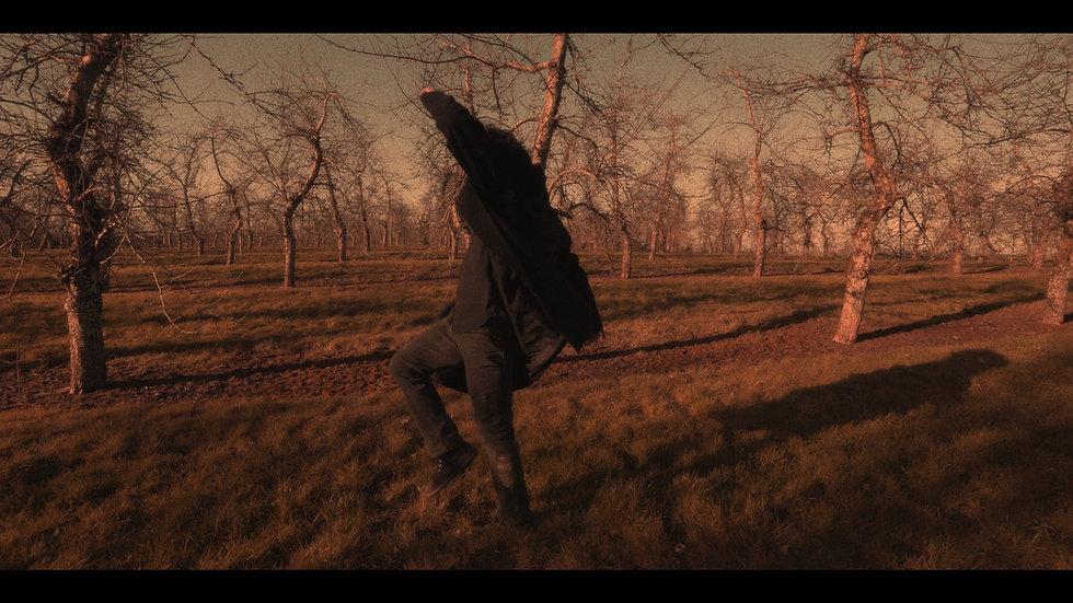 Hugh Stanier winter dance in Dragon Orchard.jpg