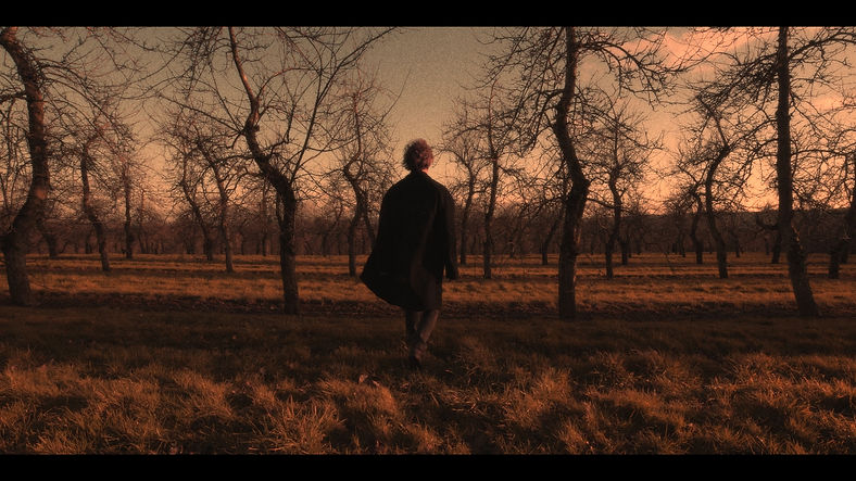 Hugh Stanier Art in the Orchard.jpg