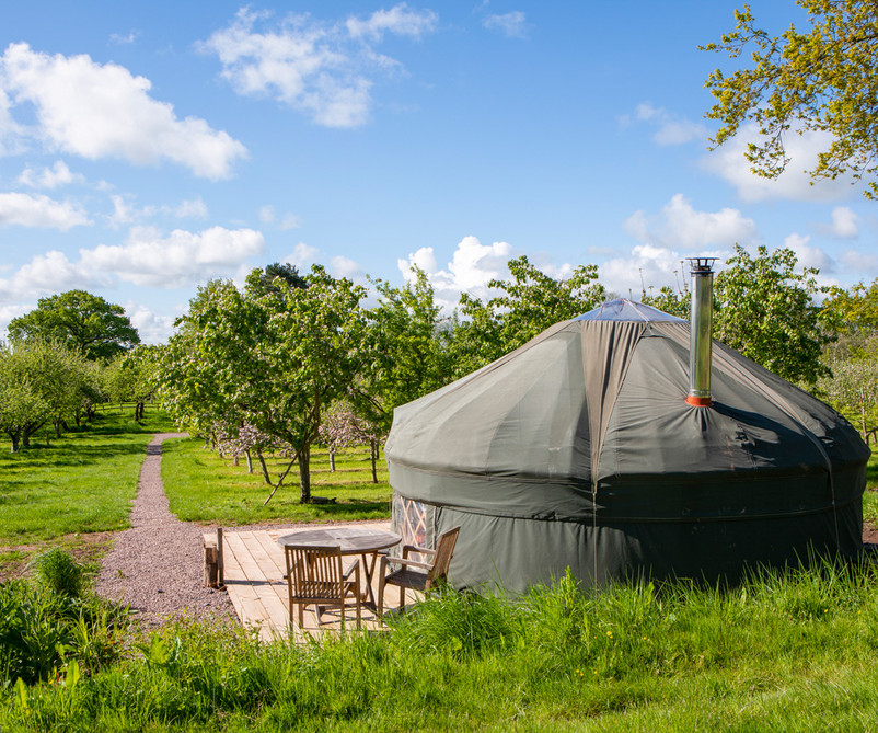 Cai Yurt in Dorothy's Orchard