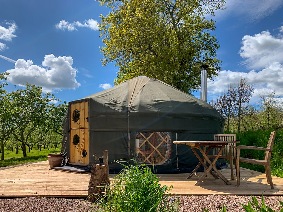 Cai Yurt and outdoor seating area next to apple and quince trees on a sunny day.jpg