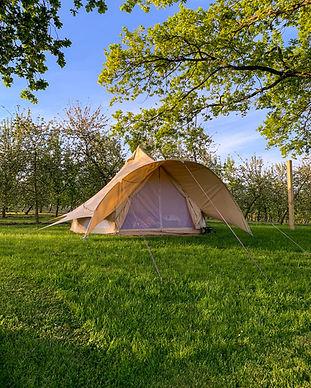 Bella-Belinda the Bell Tent at Dragon Orchard.jpg