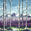 """Thumbnail: Yellow and Purple with Birch Trees 12""""x16"""""""