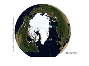 Arctic sea ice decrease has also paused