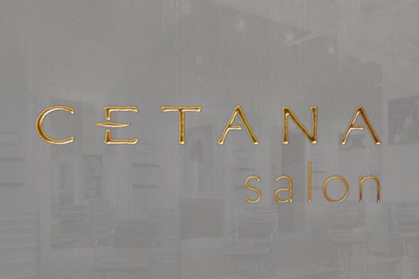 cetana-logotype-foil-1.jpg