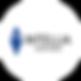 Intellia Ventures.png
