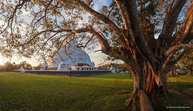 Panorama-of Mahatupa-big Dagoba-in-Anura