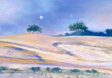 Dune, Mt Baldy #2