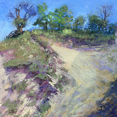 Paintings from Indiana dunes
