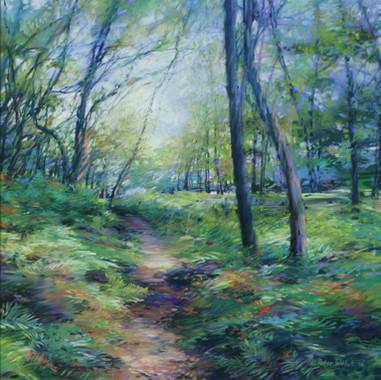 Walk in the Woods #10