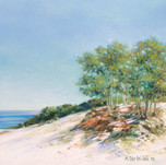 Dunes View #1
