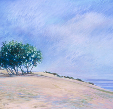Dune, Mt Baldy #3