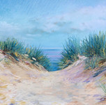 Dune, Mt Baldy #1