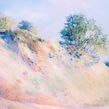 Dunes View #2
