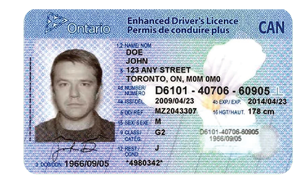 OnlyWith-Government-ID-2.1 Driver's Lice