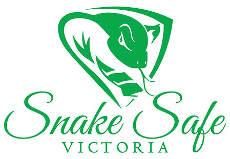 Snake Safe-02.jpg