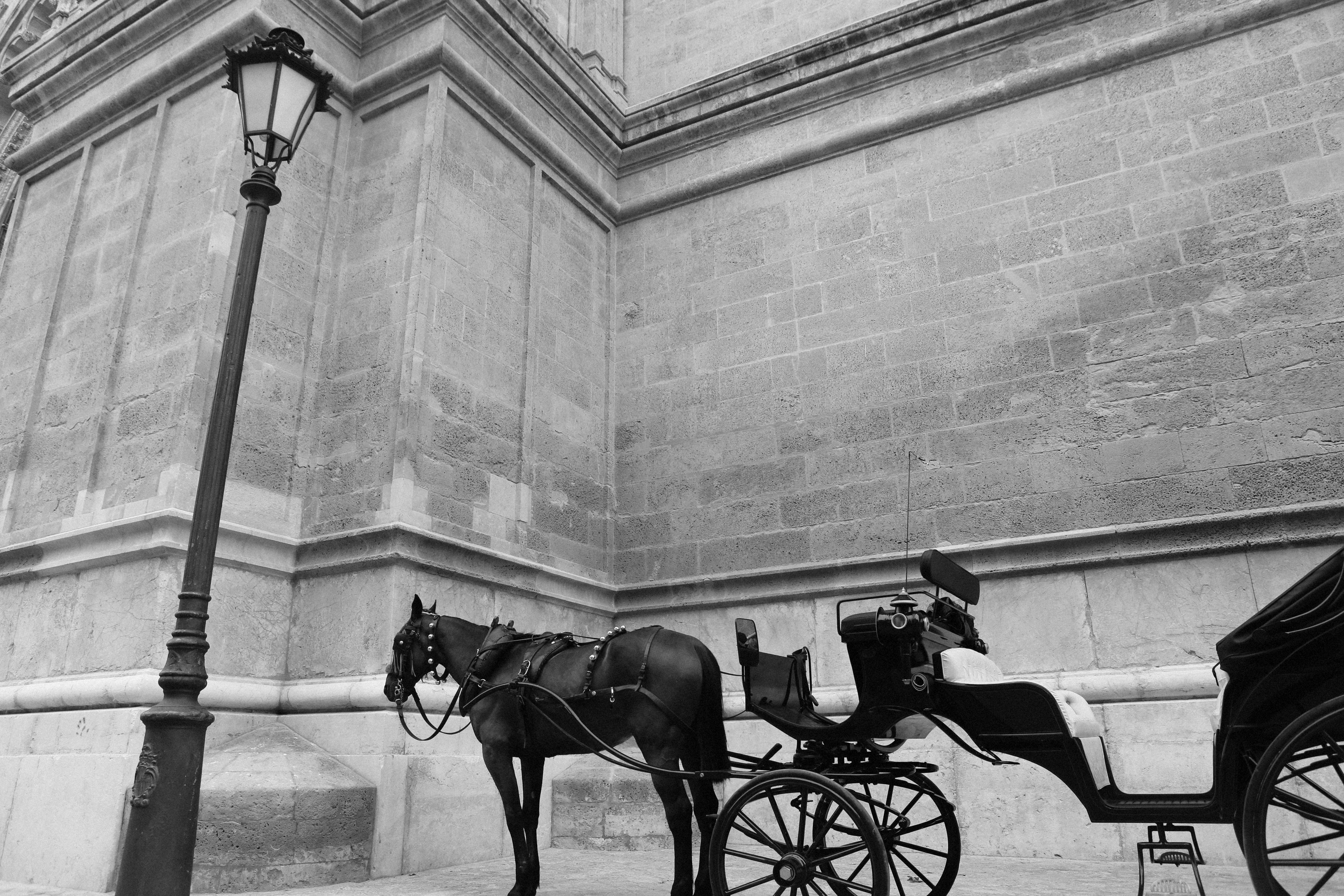 2014-06-11-Life-Of-Pix-Free-Stock-Photos-city-black-white-carriage