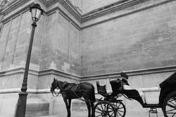 2014-06-11-Life-Of-Pix-Free-Stock-Photos-city-black-white-carriage