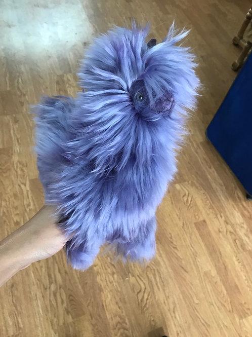 Baby alpaca fur Souvineer