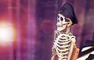 Mr Bones_edited_edited_edited.jpg