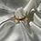 Thumbnail: Ouroboros Ring