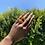 Thumbnail: Irregular Ring Set -Brown