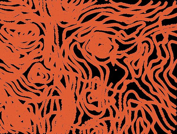 landmynstur.-orange.png
