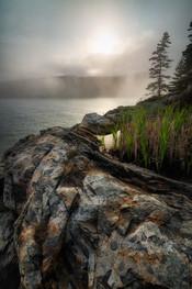 Cliff-top Swamp in Fog