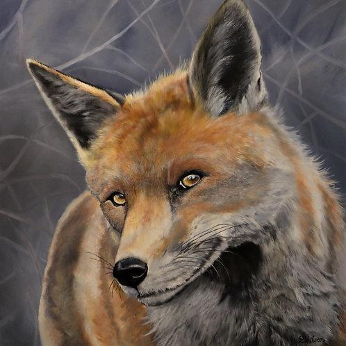 Bec Wilson | The fox of faith