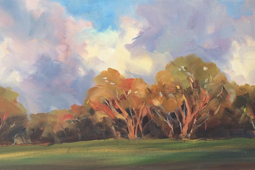 Tracey Caldwell | Towards Evening