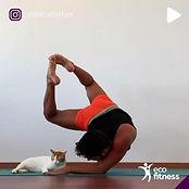 Eco-FItness-Yoga-Men 3.jpg