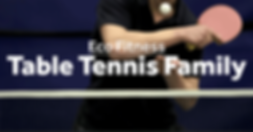Eco-Fitness-Table-Tennis-Family-2.png