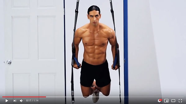 Eco Fitness ultimate Trainer video.jpg