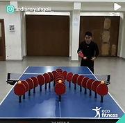 Eco Fitness Table Tennis Guru 4.jpg