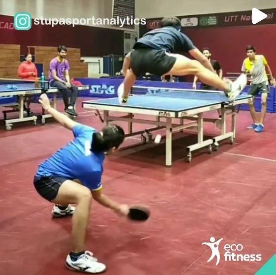 Eco Fitness Table Tennis Guru.jpg
