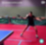 Eco Fitness Table Tennis Guru 3.jpg