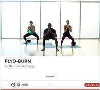 My yogaworks online classes 4.jpg