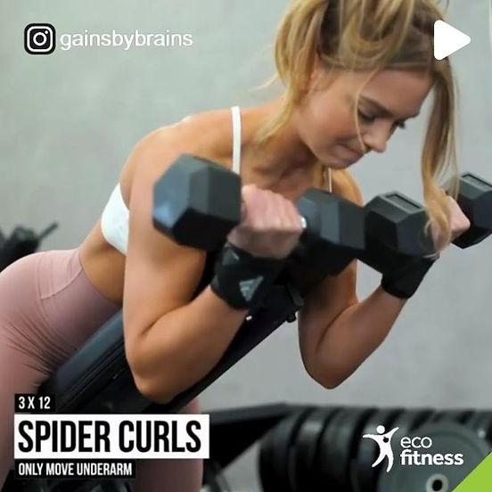 Eco Fitness Gym Queen.jpg