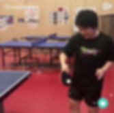 Eco Fitness Table Tennis Guru 1.jpg
