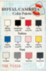 PAIGE Color palette .jpg