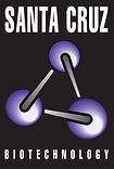Santa Cruz Logo.jpg