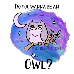 Owl_TeddyB_KatherineGallo