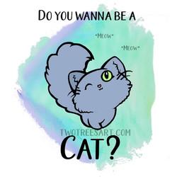 Cat_TeddyB_KatherineGallo