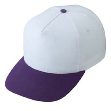 BA2110 - White Purple