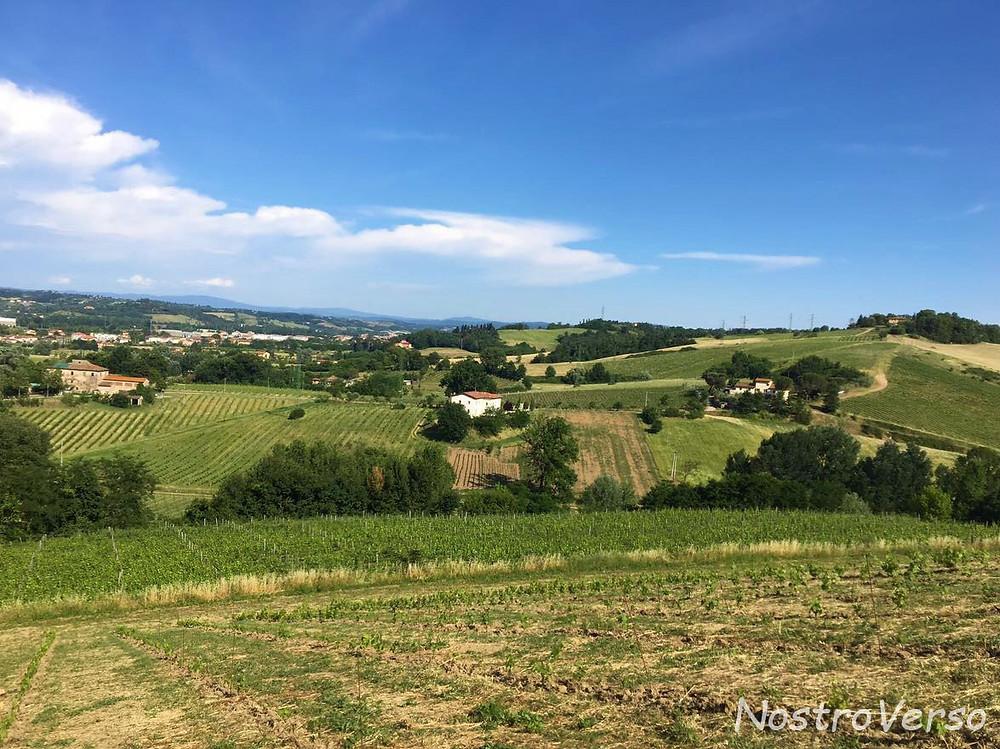 WWOOF na Toscana